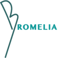 Bromelia Travel