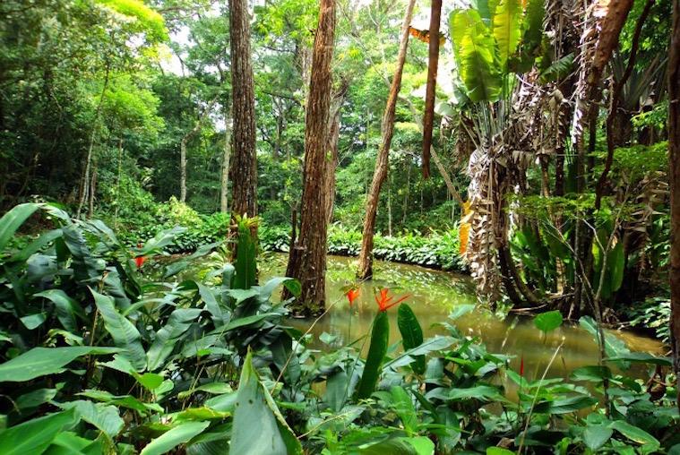 Trekking Ecotour