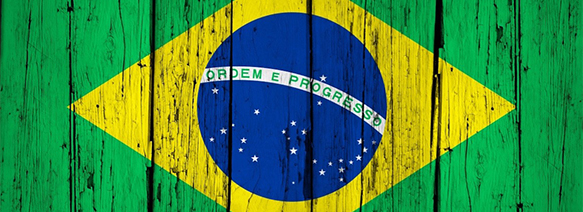 Quick Tips to Help You Prepare for Your Brazil Trip